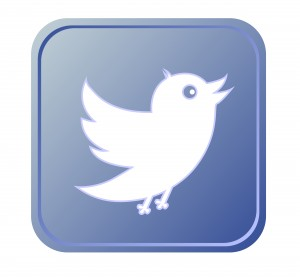 Blue button with bird icon