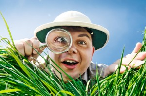 Searching through a Magnifying Glass
